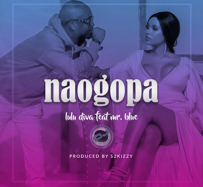 AUDIO | LULU DIVA Ft. MR BLUE – NAOGOPA | Download new song