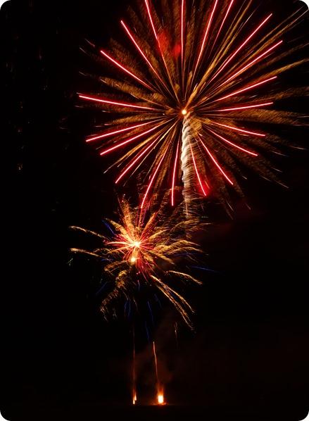 Wistaston Fireworks Display (2)