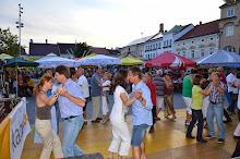 Stadtfest Herzogenburg 2014_ (154)