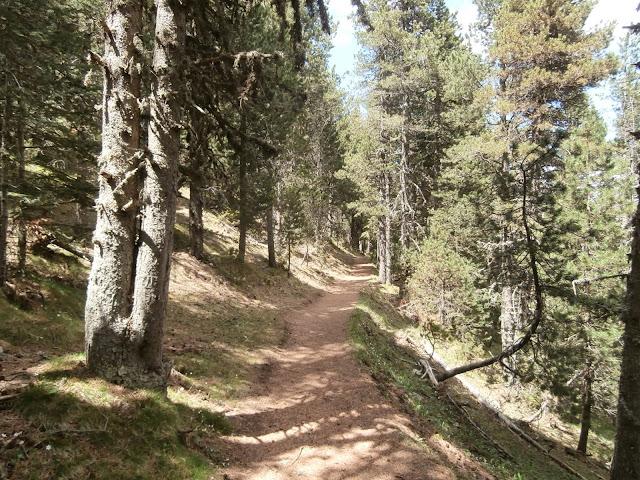 Camino de Prat de Cadi
