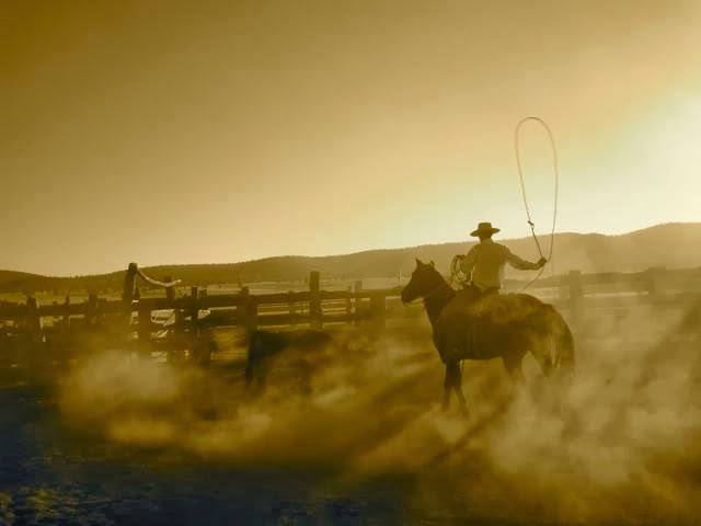 Horses - rope.jpg