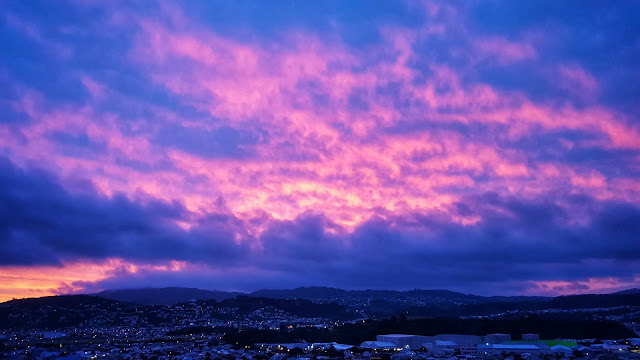 Purple sunset over Wellington (New Zealand)