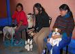campaña esterilizacion VES 2008 (7)