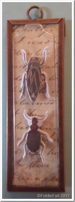 Insect Memory Frame Pendant 4