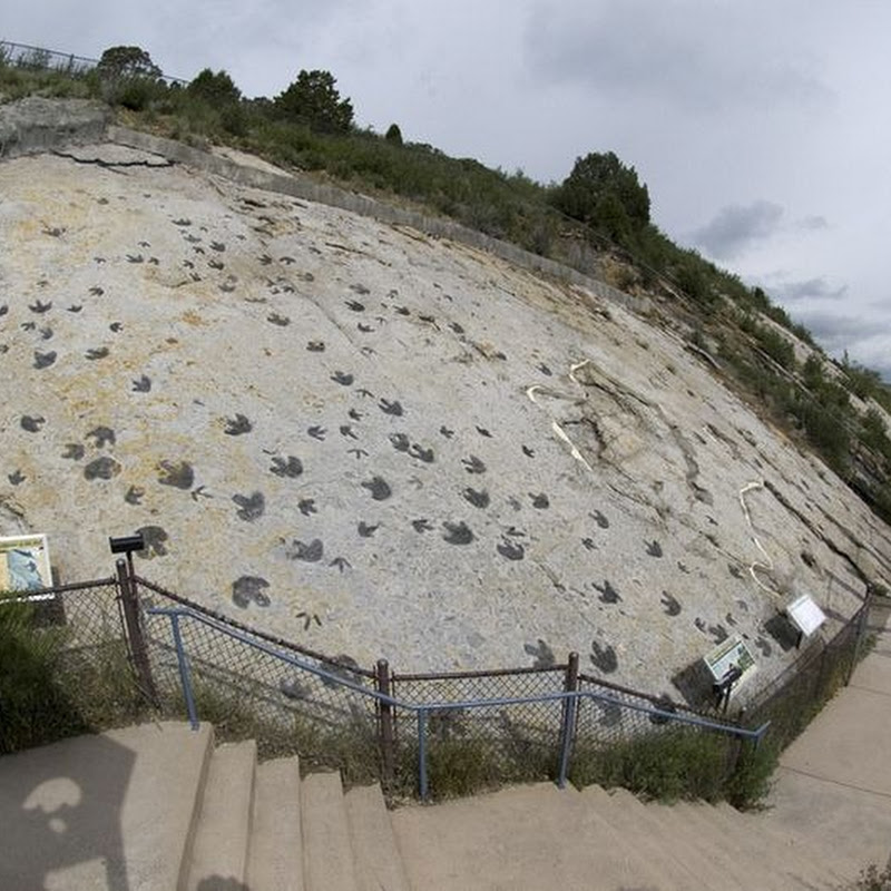 The Dinosaur Ridge in Morrison
