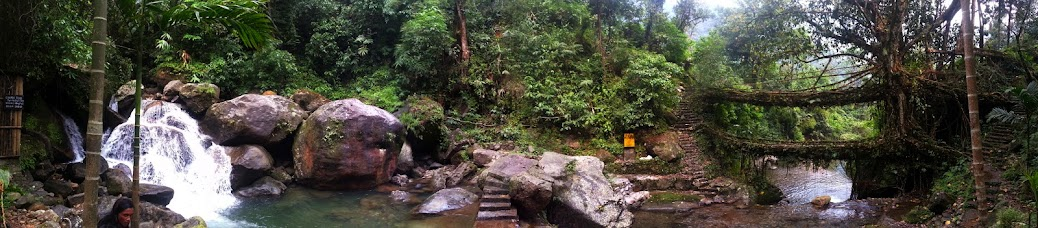 Panorama, Double decker root bridge