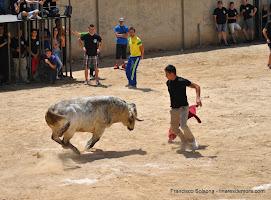 032-peña taurina linares 2014 077.JPG