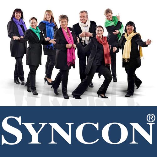Syncon GmbH, Josef-Mayburger-Kai 82, 5020 Salzburg, Österreich, Berater, state Salzburg