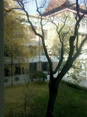 China University of Mining and Technology, 丁11 Xueyuan Road, Haidian, Beijing, China