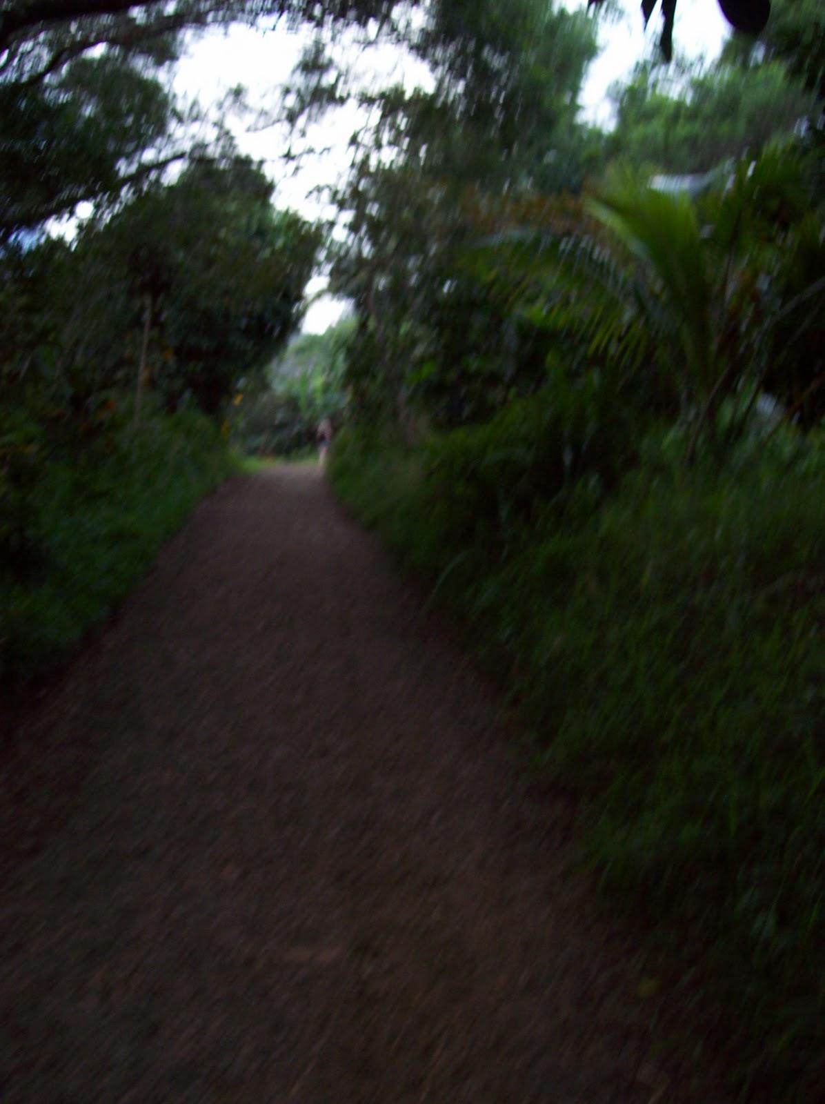 Hawaii Day 5 - 100_7266.JPG