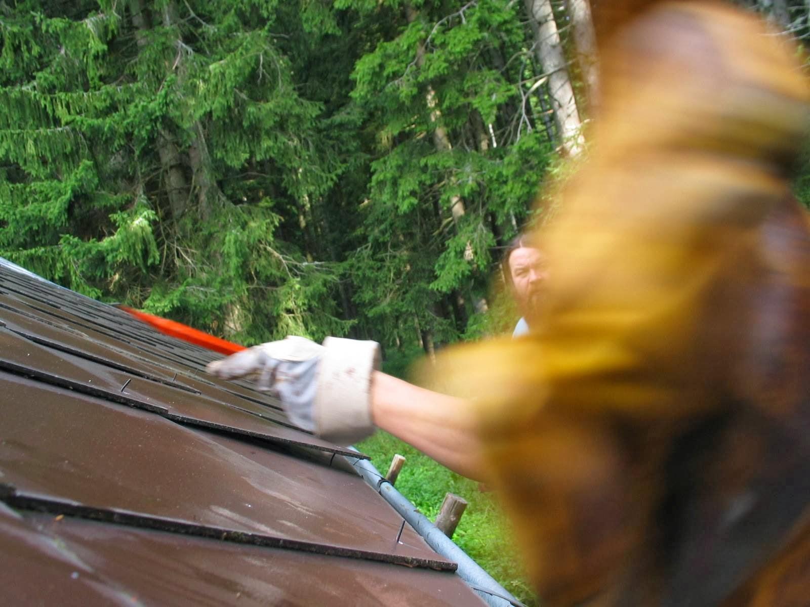 Delovna akcija - Streha, Črni dol 2006 - streha%2B021.jpg
