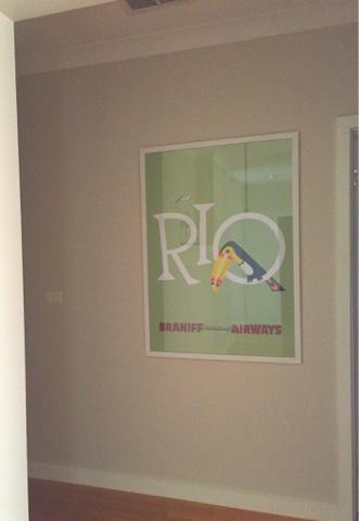 braniff airways rio print