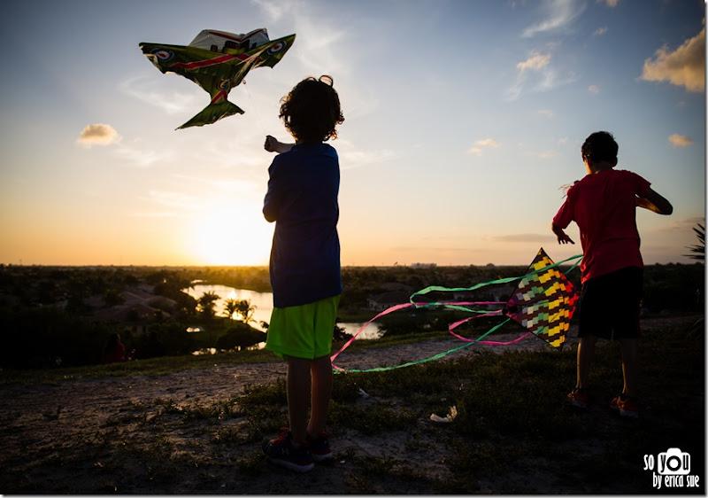 Kite Sunset silhouette-8603