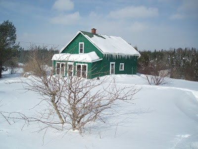 Green house buried in snow in the winter