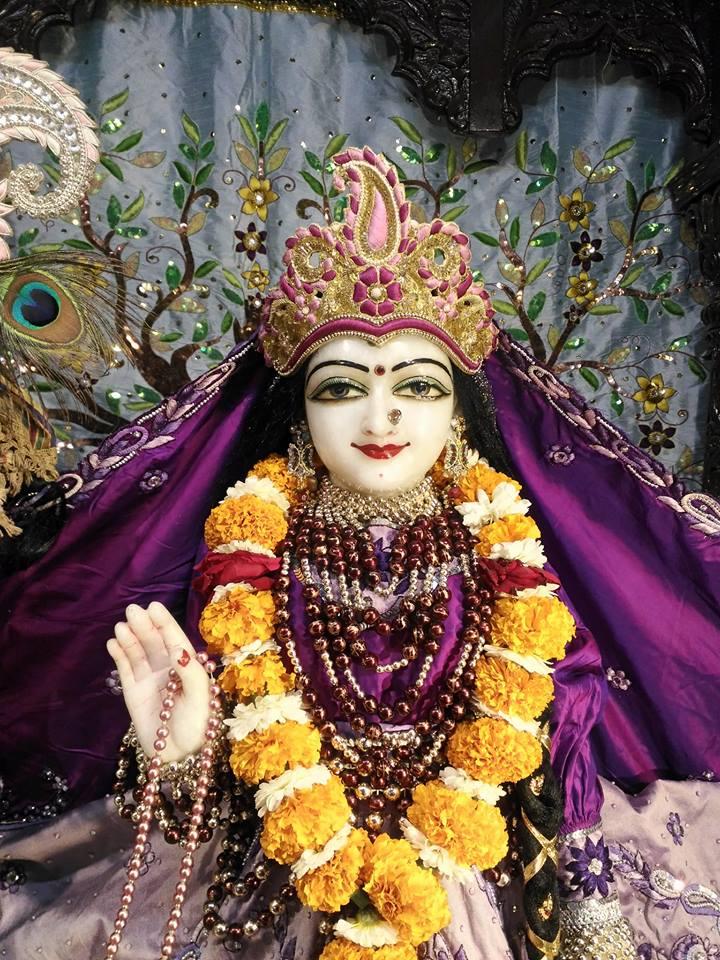 ISKCON Rajkot Deity Darshan 01 Jan 2017 (11)
