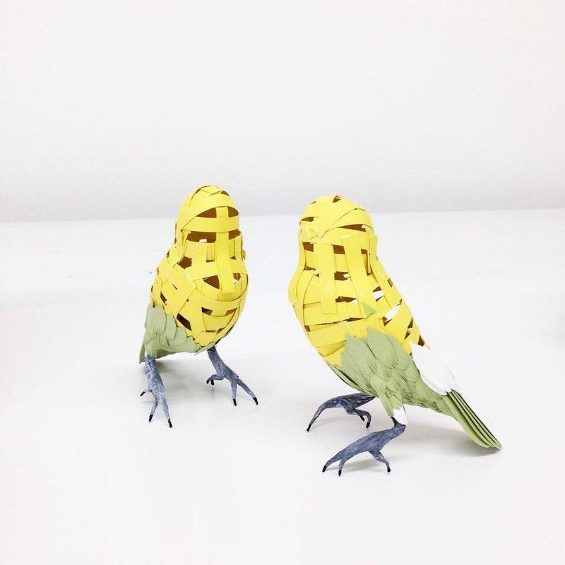 diana-beltran-herrera-birds-10