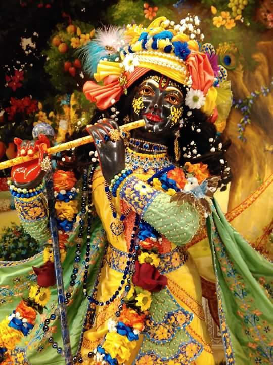 ISKCON Hungary Deity Darshan 24 Dec 2015 (6)