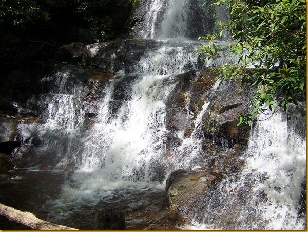 Laurel Falls (20)