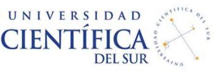 Resultados UCSUR admision 8 Julio