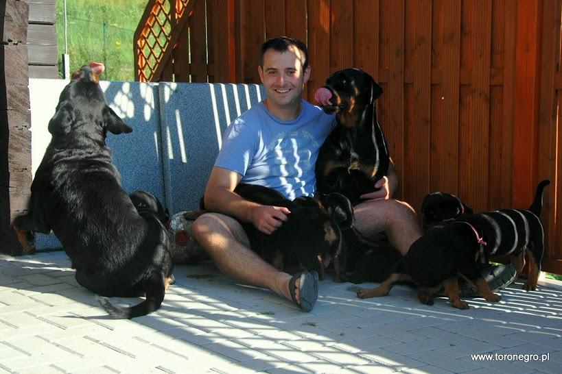 Hodowca rottweilerów z pięknymi psami