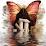 Malú Angel's profile photo