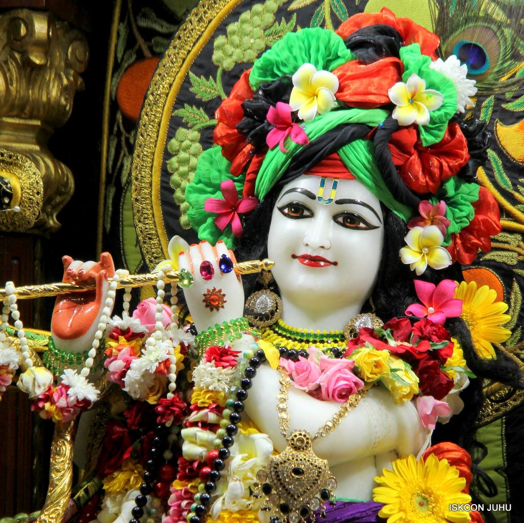 ISKCON Juhu Sringar Deity Darshan on 19th Nov 2016 (19)