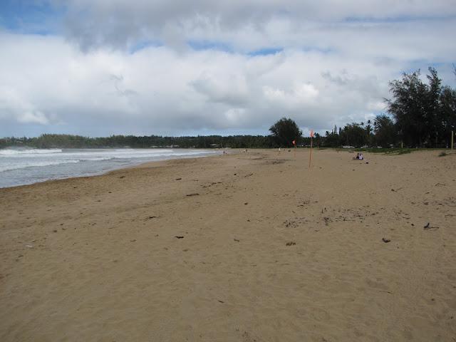 2012 - IMG_9403_Waioli_Beach_Park.JPG