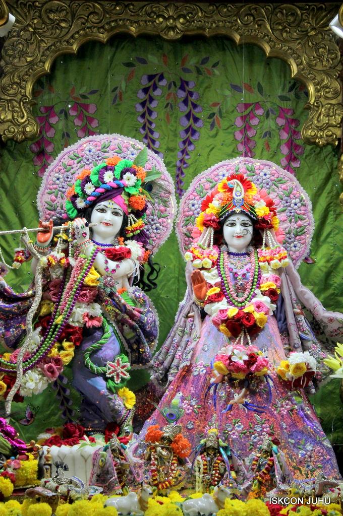 ISKCON Juhu Deity Darshan on 20th Oct 2016 (5)