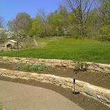 Botanic Garden - IMG_20150507_120646.jpg