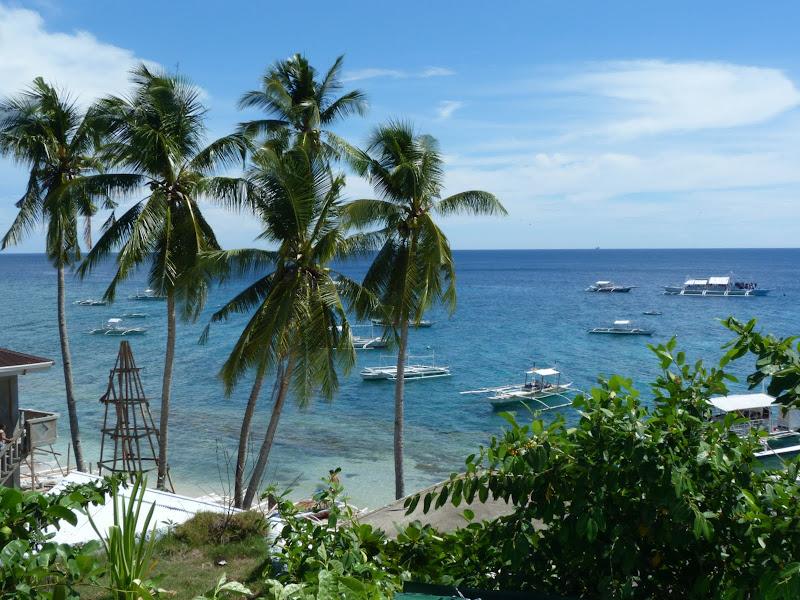 Dauin, Dumaguete, APO Island (Negros) - philippines%2Bdeux%2B767.JPG