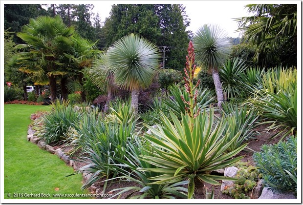160906_Butchart_Gardens_0183