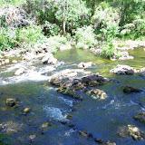 04-04-12 Hillsborough River State Park - IMGP9649.JPG