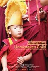 Unmistaken Child - Đứa bé không nhận lầm