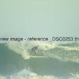 _DSC0253.thumb.jpg