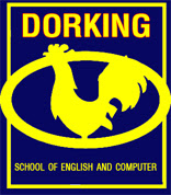 Dorking Dictionary of English Idioms and Idiomatic Expressions