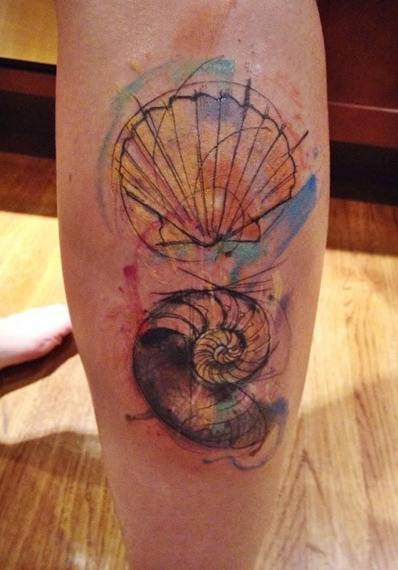esboço_em_aquarela_conchas_bezerro_de_tatuagem