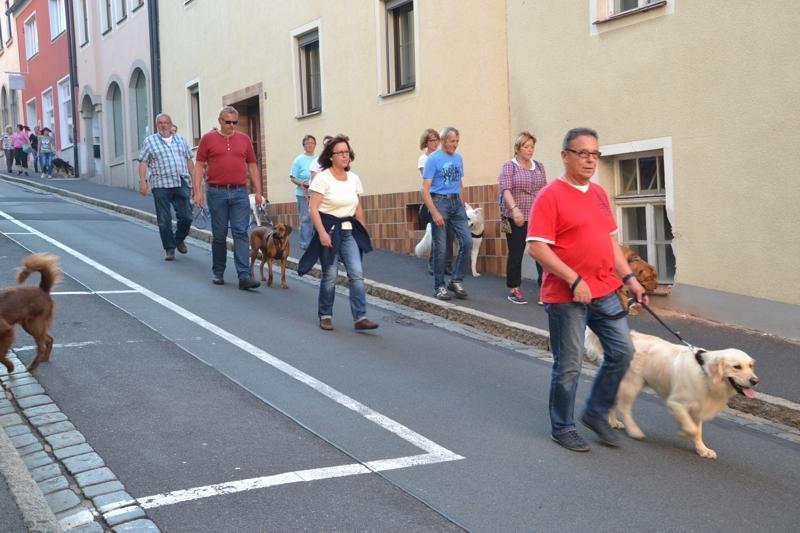 On Tour in Tirschenreuth: 30. Juni 2015 - DSC_0071.JPG