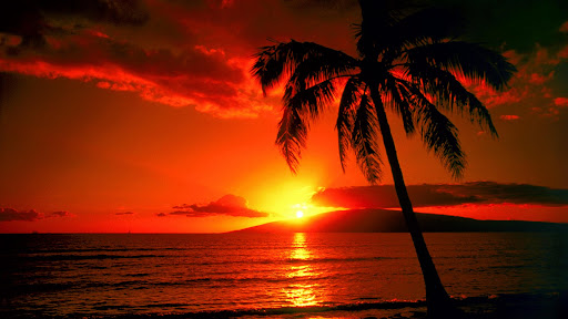 Island Sunset, Hawaii.jpg