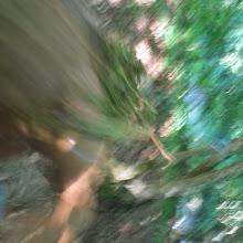 Taborjenje, Lahinja 2006 1.del - IMG_4913.JPG