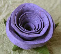 paper rose photo