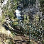 Sawpit Creek upper waterfall lookout (297518)