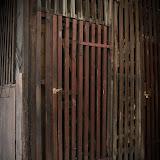 Wood in my life - Vika-9120.jpg