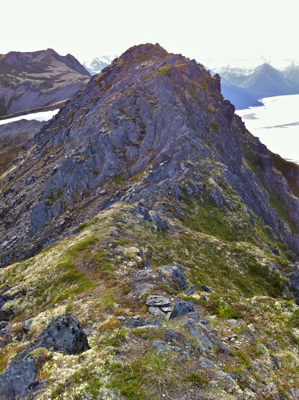Penguin Ridge Hike - IMG_1217.jpg