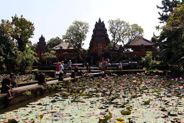 Vistas desde el Lotus Cafe