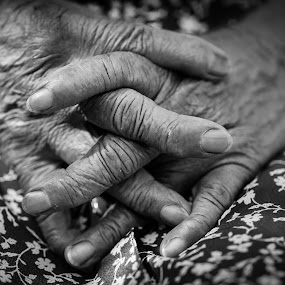Mom's hands by Rodney Rodriguez - People Body Parts (  )