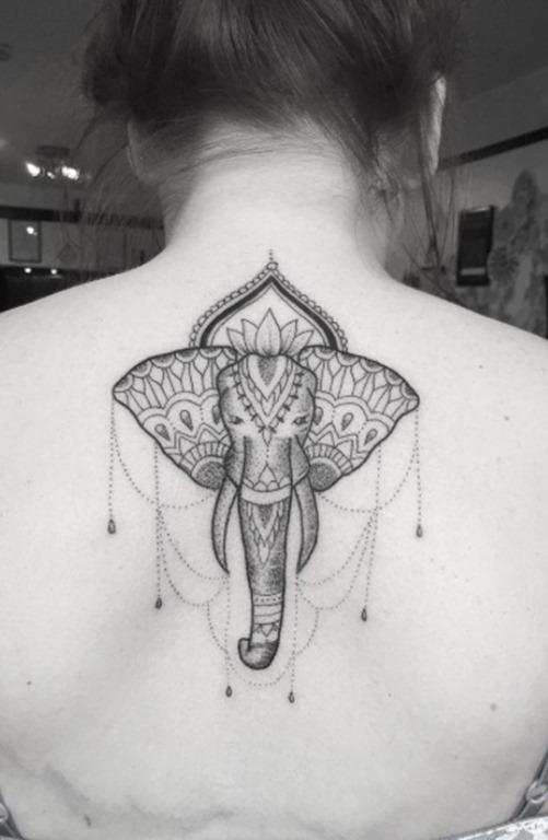 Este estampados elefante