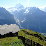gorgeous view from First mountain in Switzerland in Grindelwald, Bern, Switzerland