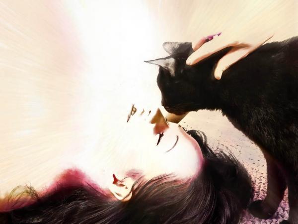 Love Of Cat, Mystic Cats