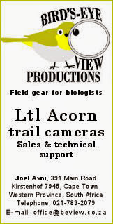 Birds Eye View Productions - Ltl Acorn Sales and technical support in South Africa