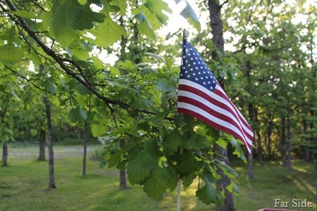 Little Flag